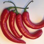 Hete rode peper